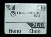 Logo mạng TN Nghiêm túc 2013