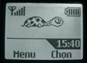 Logo mạng Rùa con
